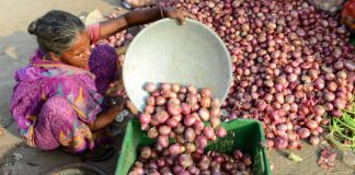 High Onion Prices in India